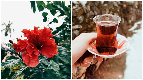 traditional, wellbeing, medicine, beauty, sri lanka